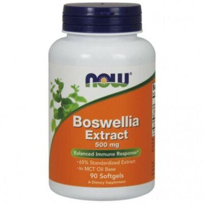 Now Boswellia Extract 500 mg - 90 Softgels