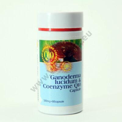 Ganoderma+Q10 coenzim kapszula