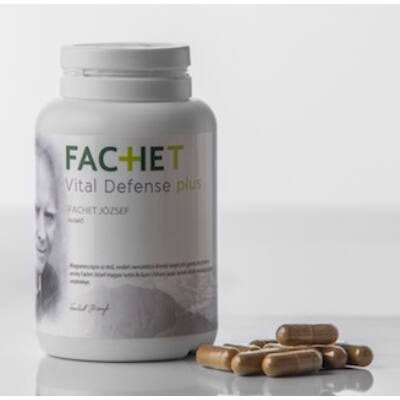 Vital Defense Fachet Plus Gyógygomba